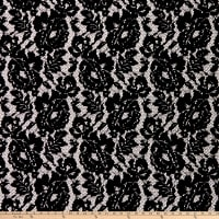 Klauber Bros. Flocked Raschel Stretch Lace Black/Black