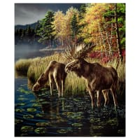 "Windham One Of A Kind Whistler Studios Moose Lake 24"" Panel Multi"