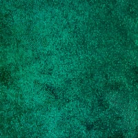 Irridescent Velvet Green/Green