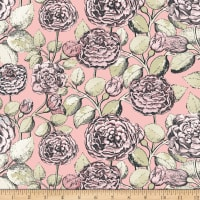 Penny Rose Sweet Stems Main Pink