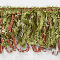 Loop Fiber Fringe Trim Sage Multi
