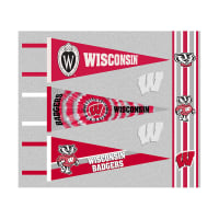 NCAA Wisconsin Badgers Pennants (Set of 3 Unique Poly Felt Designs)