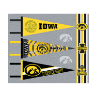 NCAA Iowa Hawkeyes Pennants (Set of 3 Unique Poly Felt Designs)