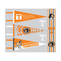 NCAA University of Tennessee Pennants (Set of 3 Unique  Poly Felt Designs) Orange