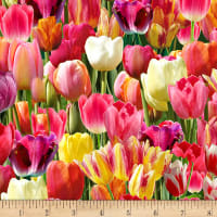 Timeless Treasures Tulip Farm Packed Tulips Bright