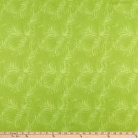 Northcott Island Sun Palm Leaves Green
