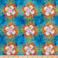 In The Beginning Fabrics Calypso Shells Blue