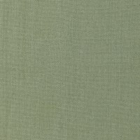 Splendid Home Colby 100% Linen Aloe