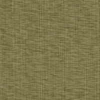 Splendid Home Carter Woven Pear