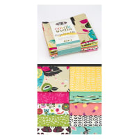 Art Gallery Color Master Designers Palette Fat Quarter Bundles 10 Pcs Jessica Swift Edition No.1