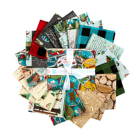 Riley Blake Gone Camping Fat Quarter Bundle 18 Pcs