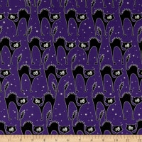 Kanvas Faboolous Fun Scaredy Glow Cats Purple