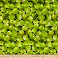 Kanvas Apple Gala Packed Apples Green