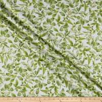 Kanvas Field of Dreams Botanical Leaves Cream/Green