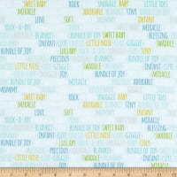 Riley Blake Sweet Baby Boy Words Light Blue
