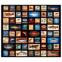 "QT Fabrics Fresh Catch Fishing Patches 36"" Panel Dark Navy"