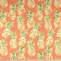PKL Studio Indoor/Outdoor Oahu Coral
