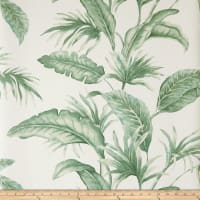 Jaclyn Smith 30026w Wallpaper Palm 02 (Double Roll)