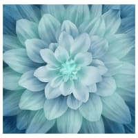 "Hoffman Digital Dream Big 44"" Floral Panel Turquoise"