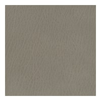 Kravet Basics Faux Leather Celine 11