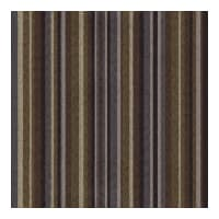 Kravet Contract Lead The Way Thunder 31520 6
