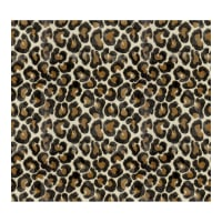 Kravet Couture Velvet The Hunt Is On Smoked Pearl 33111 816