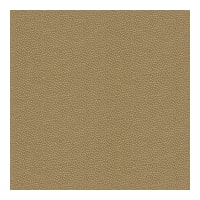 Kravet Contract Izzie Mica 32267 404