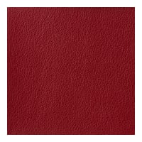 Kravet Basics Faux Leather Otto 9