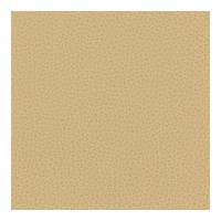 Kravet Contract Faux Leather Bess 16