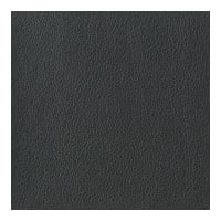 Kravet Basics Faux Leather Otto 21