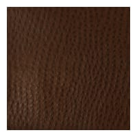 Kravet Contract Faux Leather Belus 6
