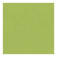 Kravet Contract Luster Satin Sprout 4202 3