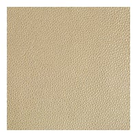 Kravet Design Faux Leather Trezzo 16