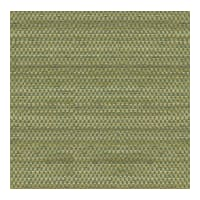 Kravet Contract Transit Mojito 32251 313