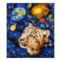 Kaufman The Living Universe Snow Leopard Celestial