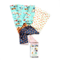 Paintbrush Studio Food Truck Fat Quarter Pack 10 Pcs Multi