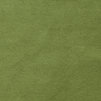 Europatex Plush Velvet 15 Green
