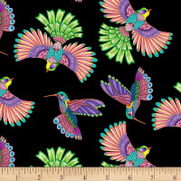 Wilmington Rainbow Flight Birds Allover Black