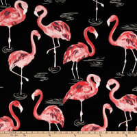 Terrasol Indoor/Outdoor Flamingo Black