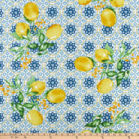 "STOF France 63"" Wide Gorbio Bleu"