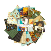 Riley Blake National Parks Fat Quarter Bundle 16 Pcs.