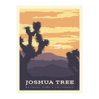 "Riley Blake National Parks 36"" Panel Joshua Tree"