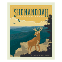 Riley Blake National Parks Shenandoah Panel