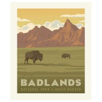 Riley Blake National Parks Badlands Panel