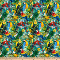 Toucans And Macaws Multi