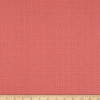 Andover Roseberry Cottage Grid Grapefruit