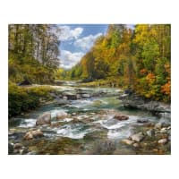 "Hoffman Digital Call Of The Wild 35"" River Forest Scenic Panel Rusty"