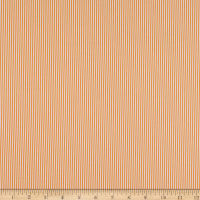 Contempo My Little Sunshine 2 Pinstripe Orange