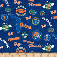 NCAA Florida Gators Home State Blue/Orange/White/Green