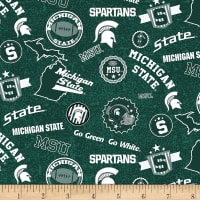 NCAA Michigan State Spartans Home State Green/White/Gray